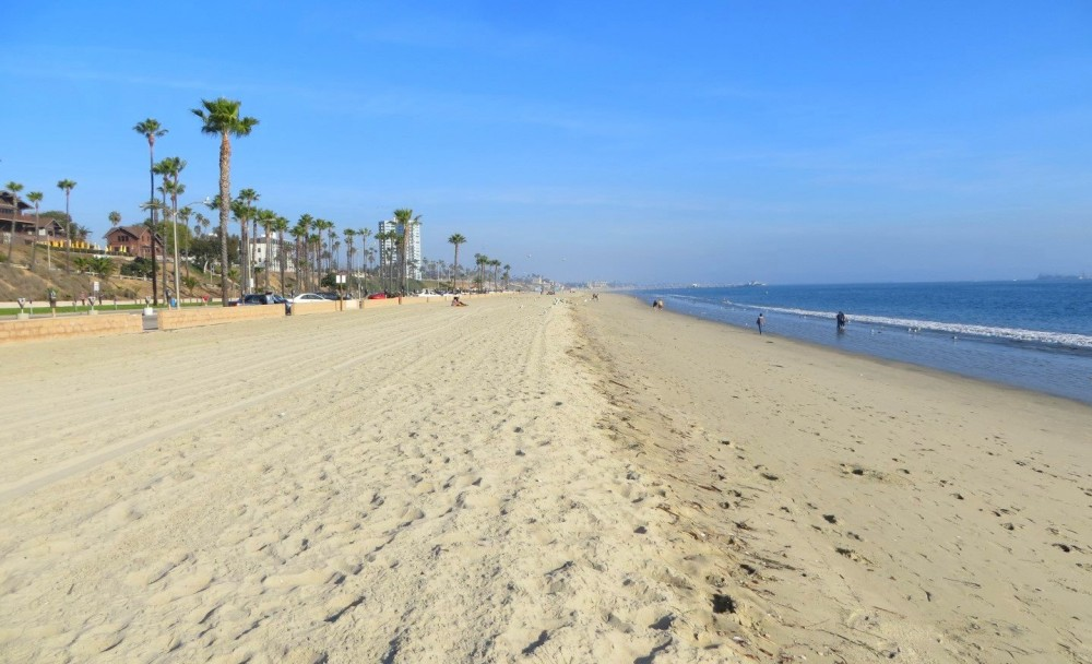 Long Beach Reflections